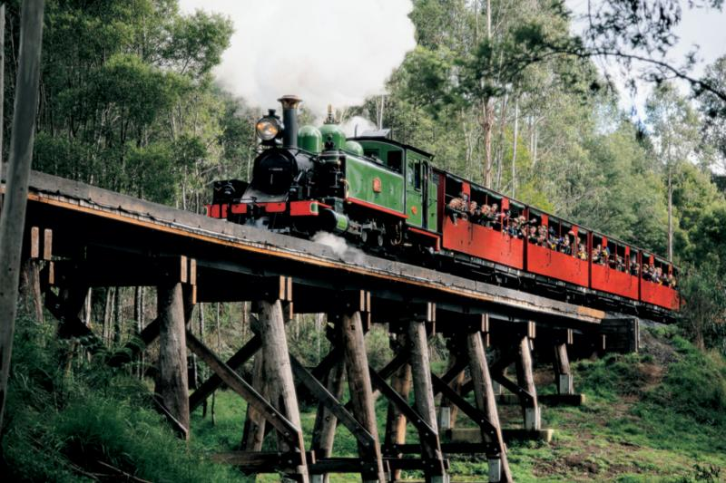 Morning Puffy Billy Train Ride From Melbourne
