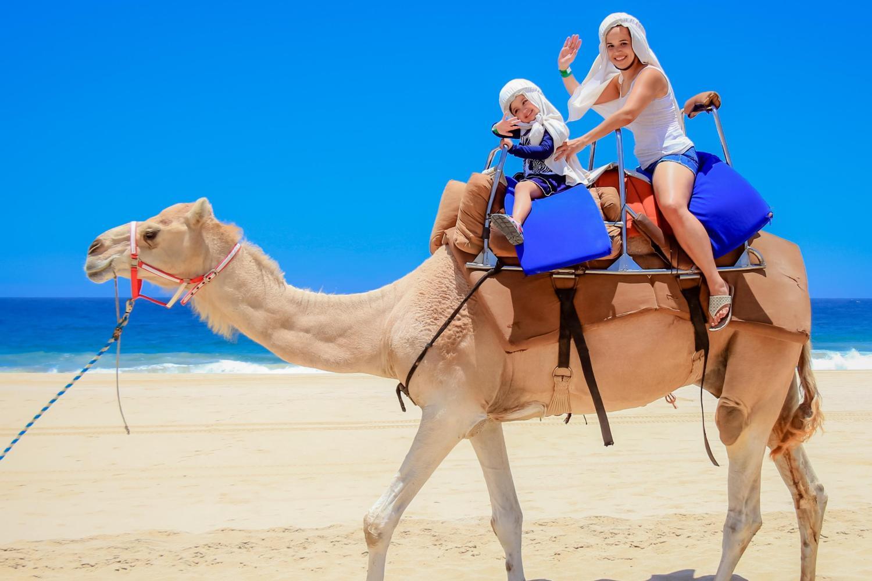Outback and Camel Safari