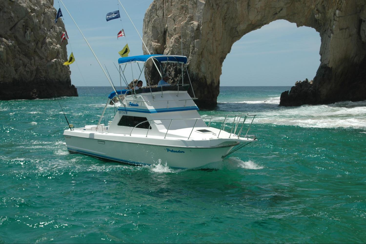Cabo Sport Fishing on a Private 28' Boat - Full Day Trip