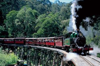 Puffing Billy Train Ride With Yarra Valley Winery