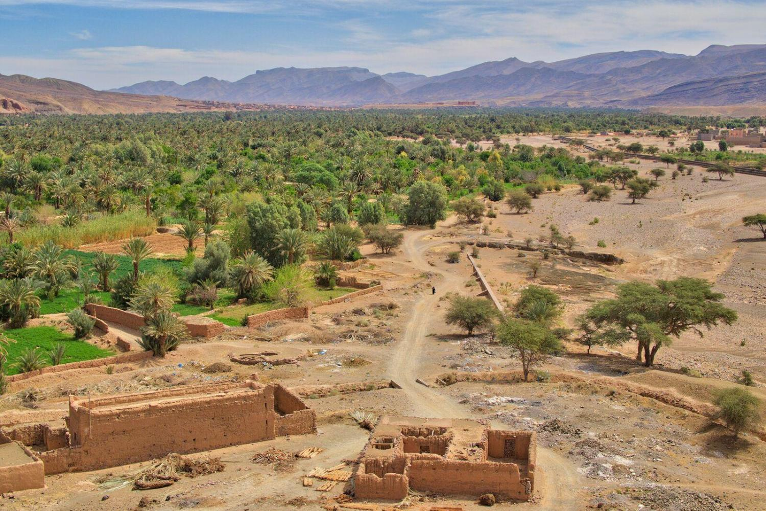 Take in the arid climate of Ouarzazate