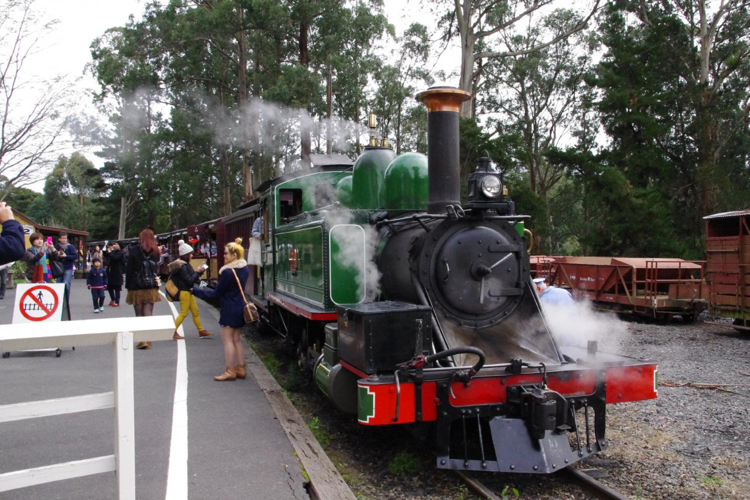 Puffing Billy Train Ride With Wildlife & Winery Lunch At Fergusson's Winery
