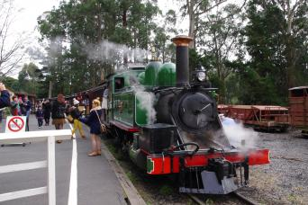 Puffing Billy Train Ride With Wildlife & Winery Lu
