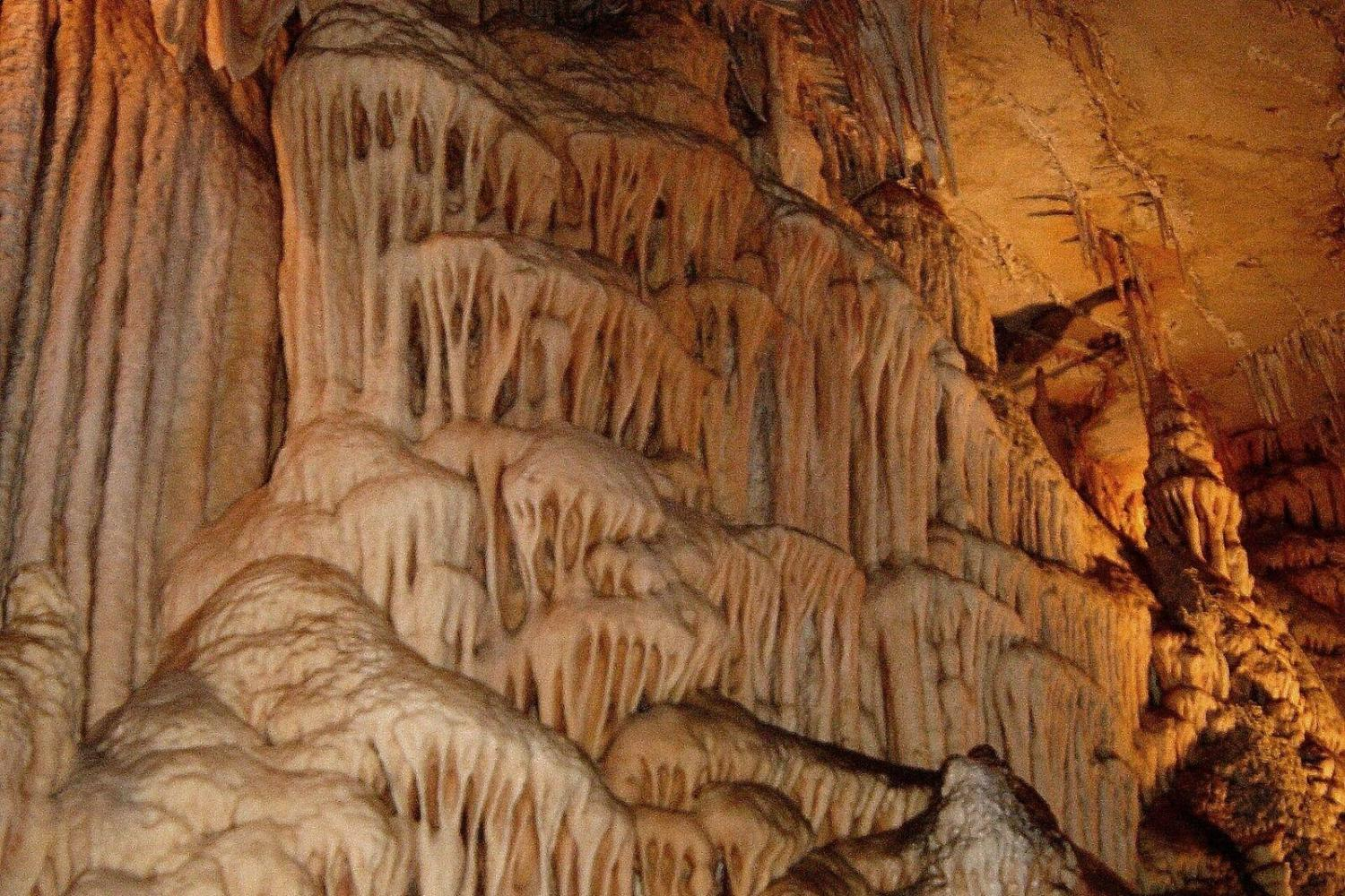 Jenolan Caves & Blue Mountains Day Trip From Sydney