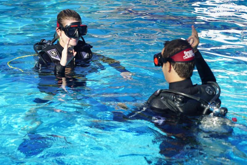 Scuba Diving Course Pool