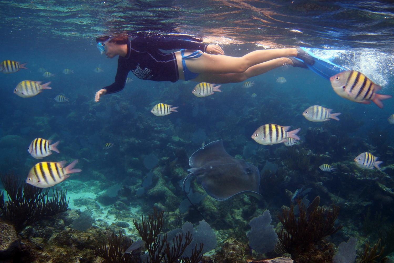 Local Snorkeling