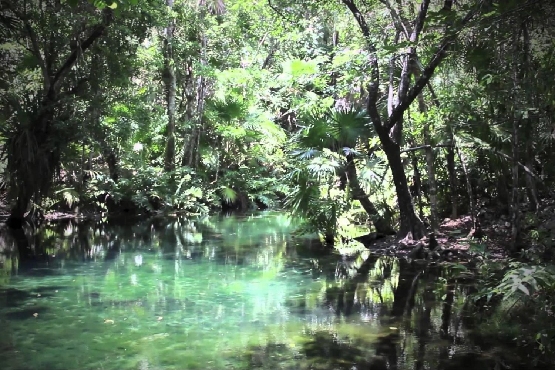 Cenote Chickin-Ha