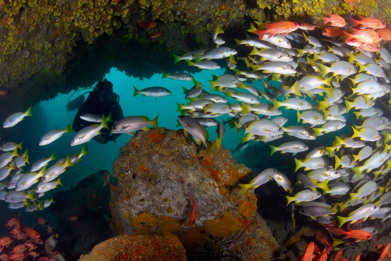 Scuba Diving in the Best Beach Destinations - ScubaCaribe