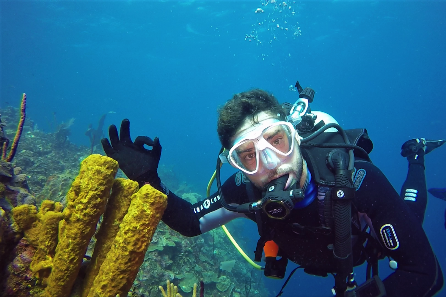 Diving with ScubaCaribe in Punta Cana