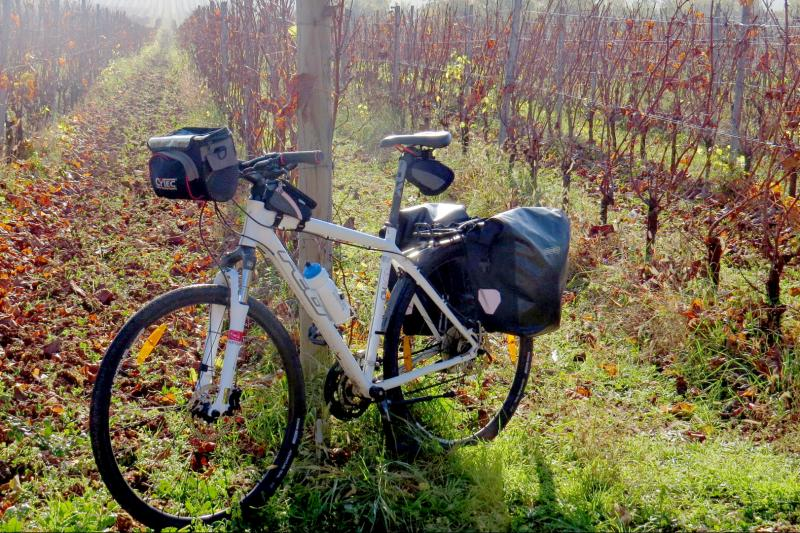 Cycle through Istrian hills