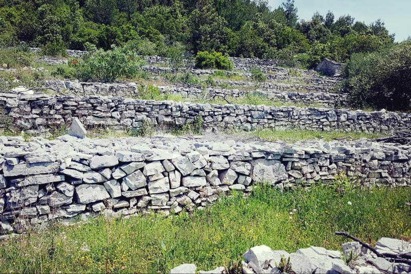 Croatian culture, history
