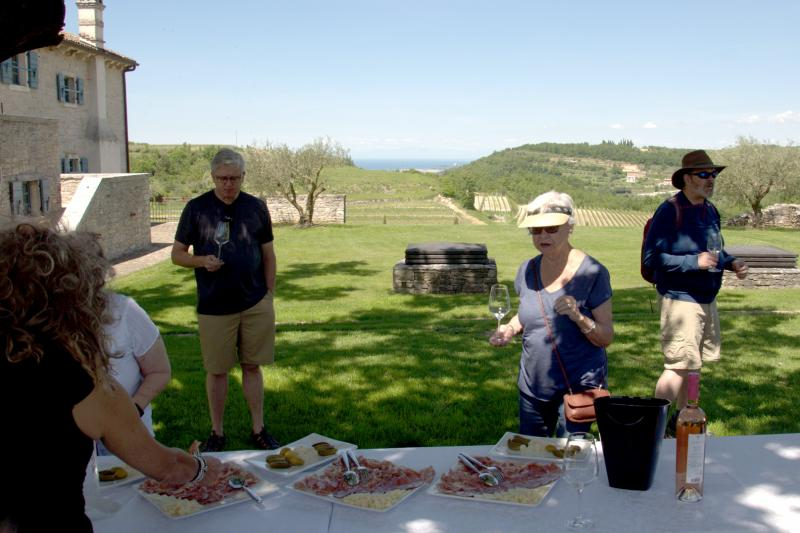 Visit local wine producers and taste Istrian wine