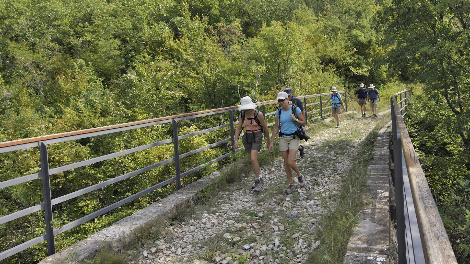 Walking adventure through green Istria