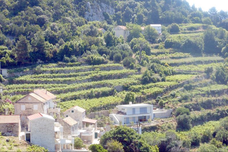 Croatian lifestyle and Mediterranean culture
