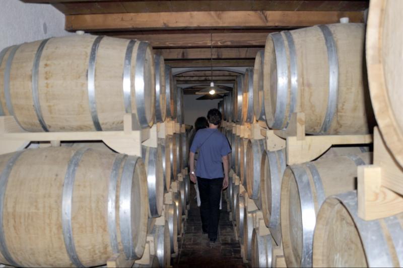 Posjet lokalnoj vinariji i degustacija