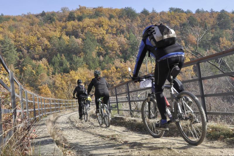 Bicikliranje istarskim krajolikom