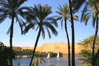 Feluccas on the Nile, Aswan