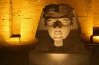 A Sphinx in the Luxor temple in Egpyt