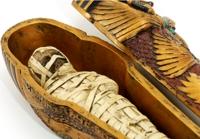 Mummy and casket, Egypt