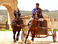 Chariot riding display in Jerash, Jordan