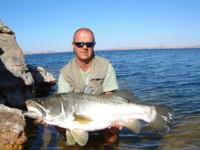Beautiful looking Nile Perch at Lake Nasser, Egypt