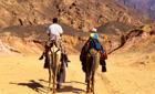 Camel riding in the desert, Egypt