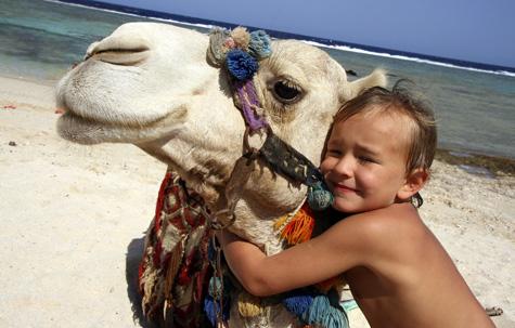 Egyptian Family Adventure, Egypt tour
