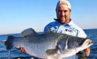Nice looking Nile Perch, Lake Nasser, Egypt