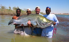 Monster Nile Perch, Lake Nasser, Egypt