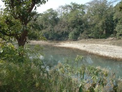 View of the river from our land, Bardia, Nepal
