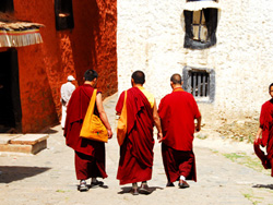 monks at Tashilhunpo Monastery, Tibet