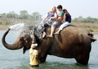Elephant shower for the clients in Chitwan, Nepal