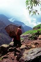 Local trekking in Nepal