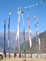 Prayer flags, Langtang region, Nepal