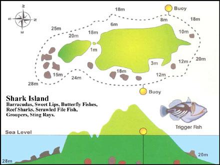Map of shark island