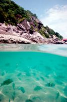The island of Ko Tao, Thailand