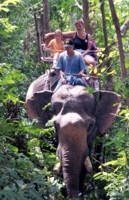 Elephant ride in the jungle, Chiang Mai, Thailand
