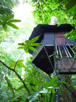 Treehouse in Khao Sok National Park, Thailand