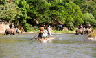 Bamboo rafting near Chiang Mai, Thailand
