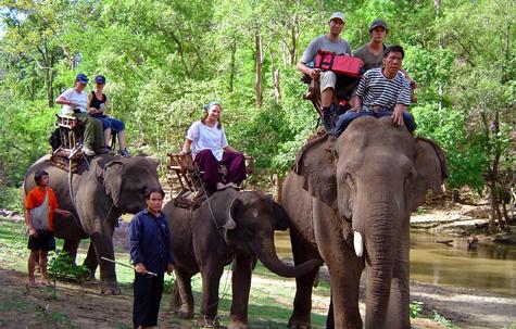 Elephant trekking near Chiang Mai, Thailand