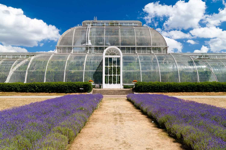 large - Kew Gardens Royal Botanic Gardens Kew Richmond Surrey Tw9 3ae