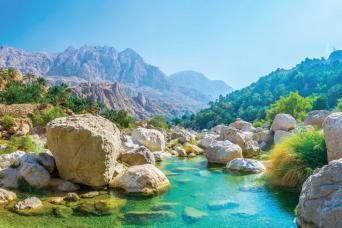 Discover the South & Wadi Shab