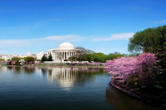 Two-Day Washington DC Sightseeing Tour with Gray Line Washington DC