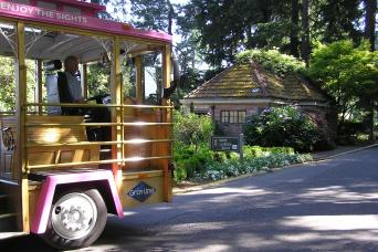 Hop-On Hop-Off Pink Trolley Sightseeing Tour - One Day Pass
