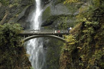 Hop-On, Hop-Off Trolley and Multnomah Falls Combination Tour