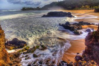 Oahu Grand Circle Island Tour, Hanauma Bay, Dole Plantation and more!
