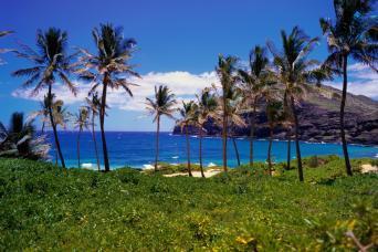 Hawaii Island Grand Circle Island & Volcano Tour