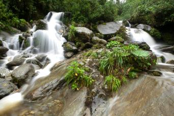 See the marvelous waterfalls near Presidente Figueiredo - private