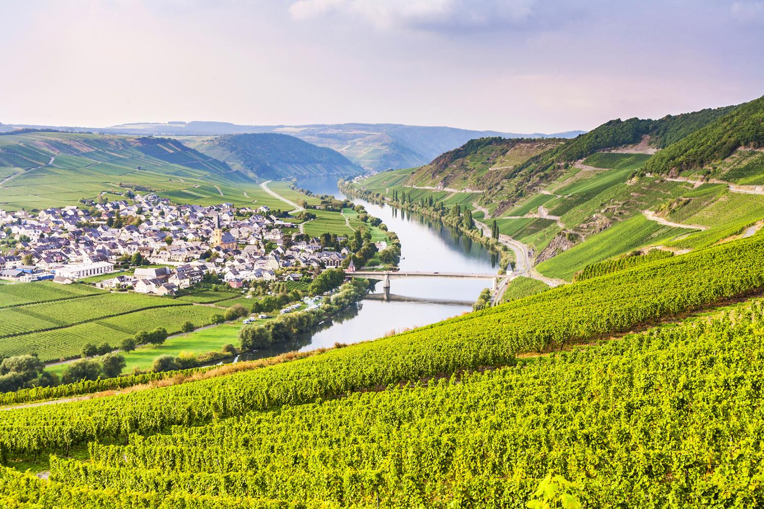 Self-guided Moselle Classic Cycle Path