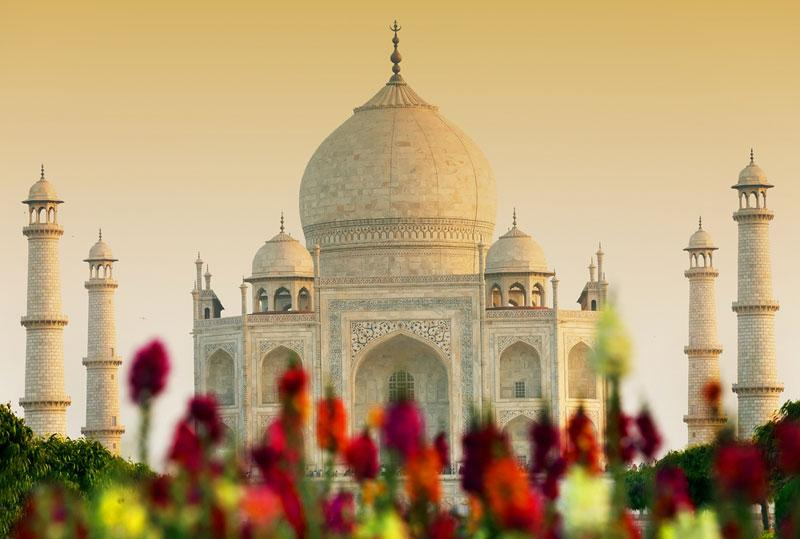 Taj, Temples & Tigers discovery tour of India